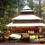 hadimba temple 11